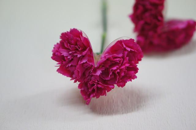 母の日の花贈り